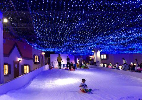 東京あそびマーレ・雪そり