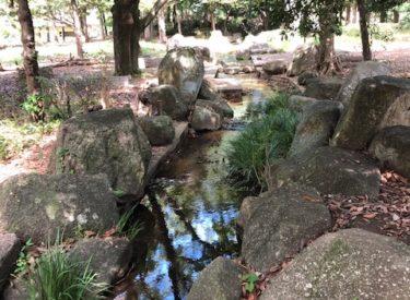 引地台公園・ふるさと川