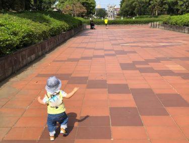 引地台公園・散歩風景2