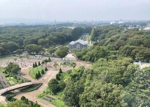 麻溝公園 樹林広場