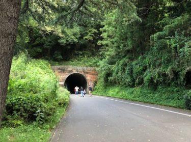 こどもの国・第一トンネル