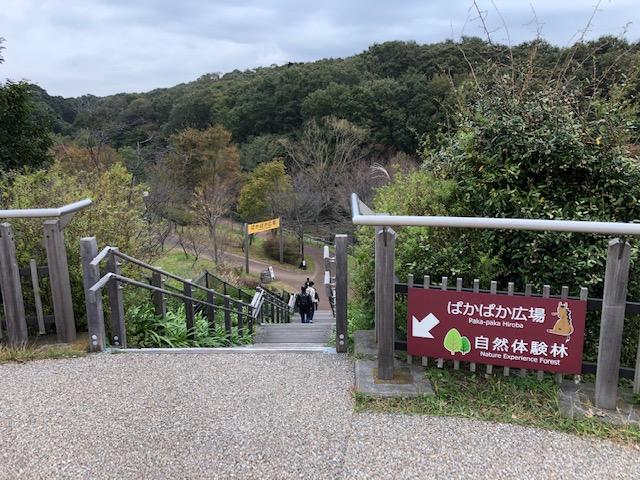 ズーラシア ぱかぱか広場入口