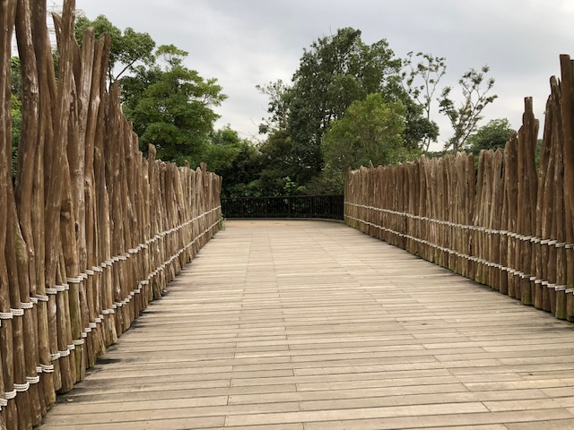 ズーラシア サバンナへ向かう橋
