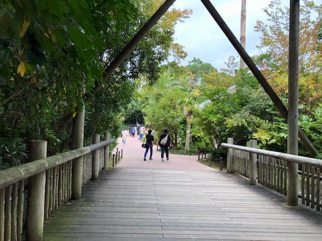 ズーラシア 亜寒帯の森の橋