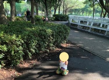 ふれあい動物広場・園内風景