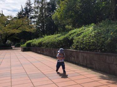 引地台公園・散歩風景3