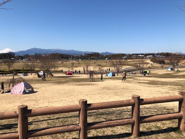 大和ゆとりの森 修景池ゾーン3