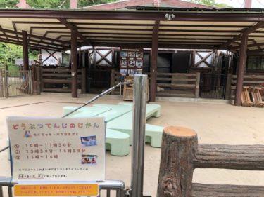 子供自然公園・万騎が原ちびっこ動物園2
