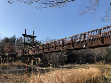 泉の森・緑のかけ橋2