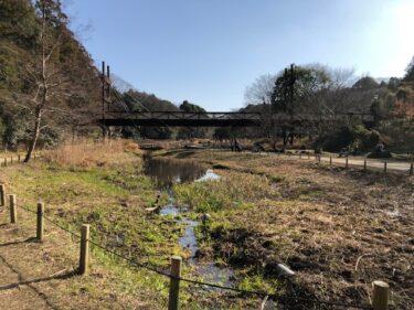 泉の森・遊びの小川