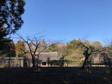 泉の森・郷土民家園1