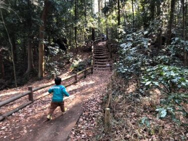 泉の森・樹林地3