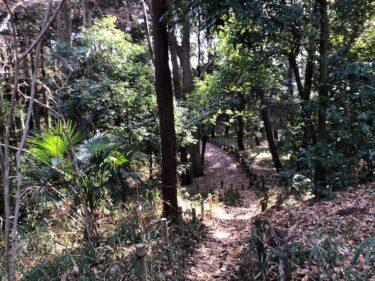 泉の森・くぬぎの森