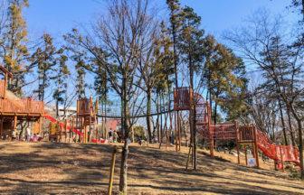 鶴間公園・森のあそび場2021年01月
