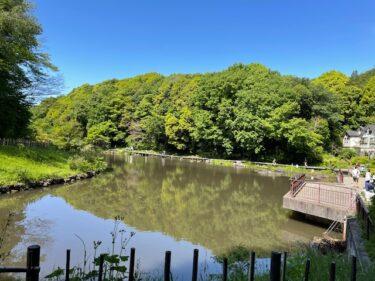 四季の森公園・はす池1