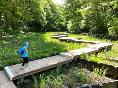 四季の森公園・しょうぶ園