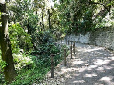 四季の森公園・ちびっこ広場近くの散策路