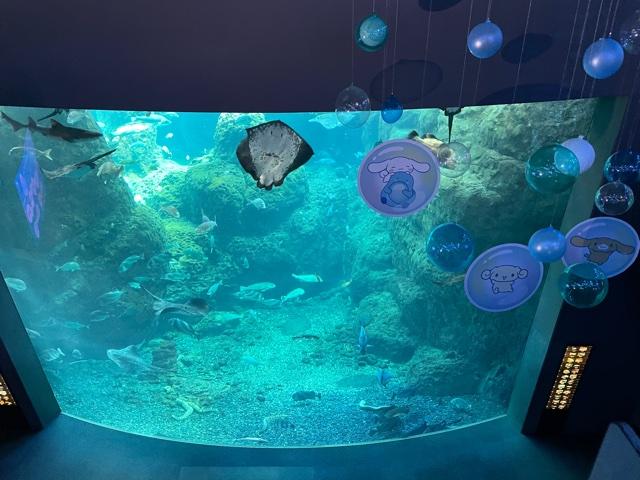 新江ノ島水族館・相模湾大水槽202105